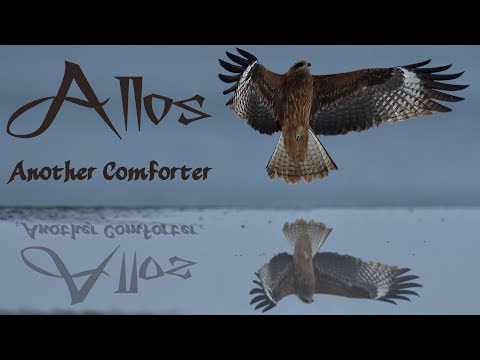 Allos (Another) Comforter – with Daniel Mesa